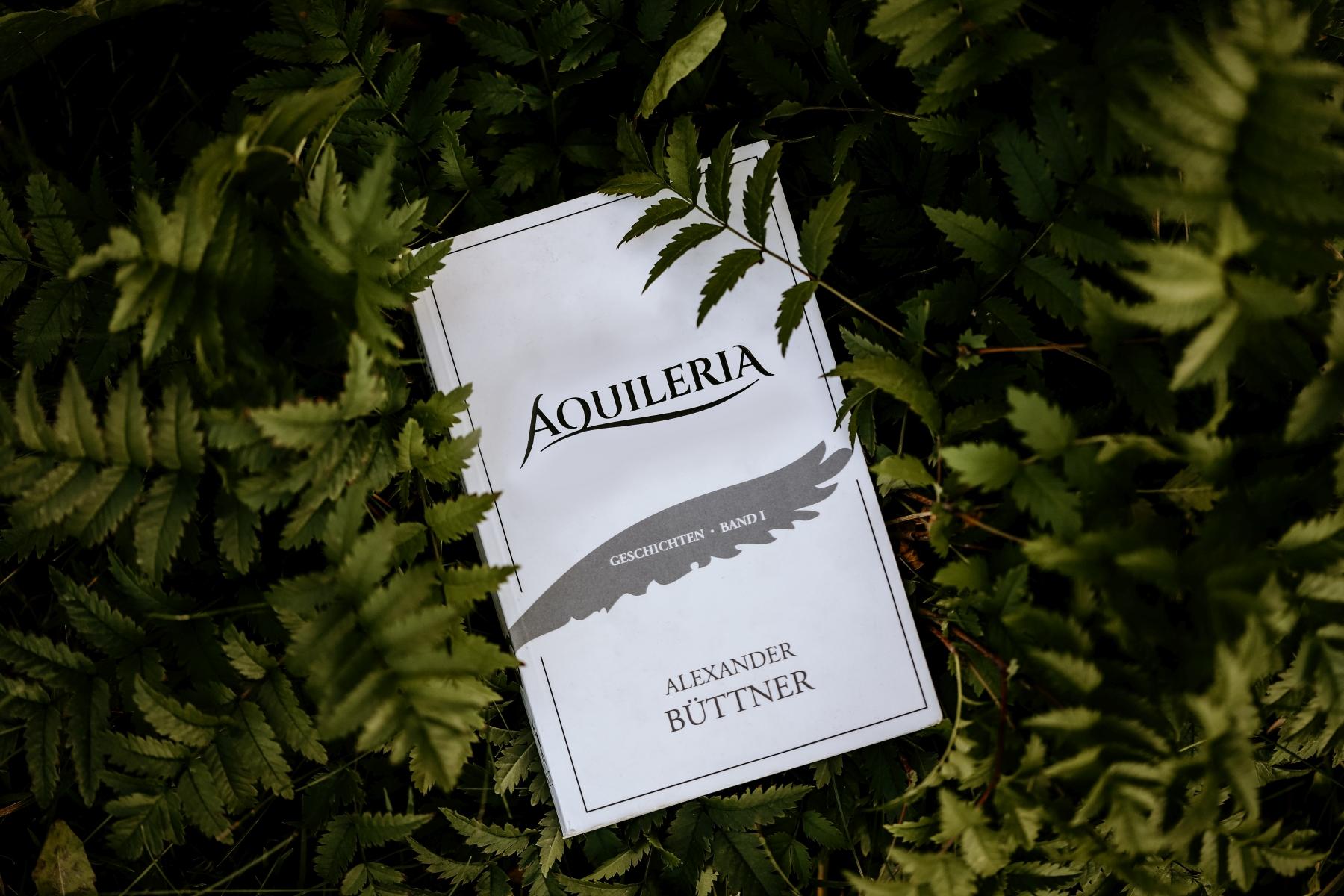 AQUILERIA ist ein Buch mit mittelalterlichen Geschichten.